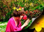 Bilder Frühling
