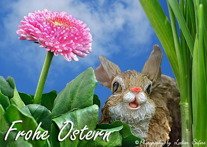 Greeting card Osterhase