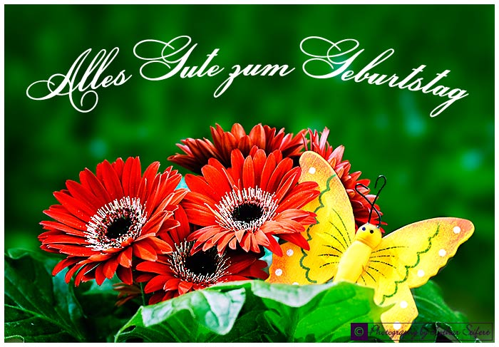 Greeting card Alles Gute