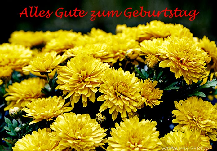 Greeting card Bouquet with yellow asters to congratulate.