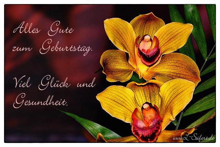 Grußkarte geburtstag mit orchideen alles gute und gesundheit