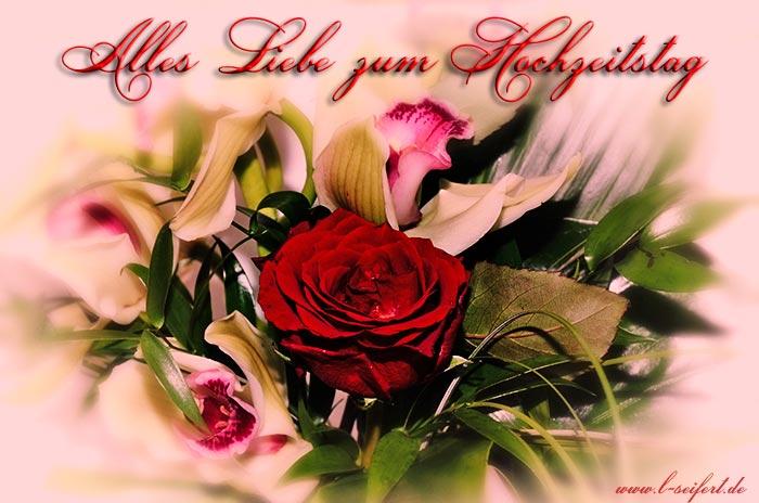 Grüße zum Hochzeitstag für meinen Liebling. Auf viele weitere Jahre ...