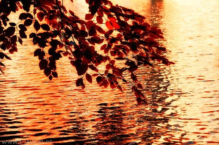 See im Herbst
